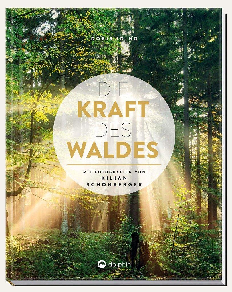 Kraft-des-Waldes-00.jpg